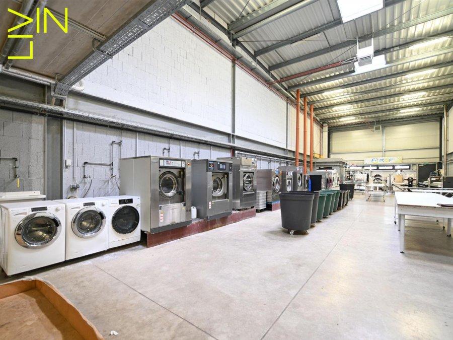 louer local commercial 0 chambre 425 m² kehlen photo 4
