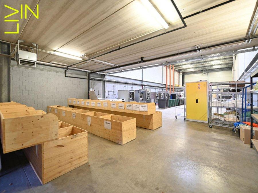louer local commercial 0 chambre 425 m² kehlen photo 3