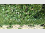 Building land for sale in Folkling - Ref. 6717640