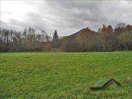 Terrain constructible à vendre à La Houssière - Réf. 6060232