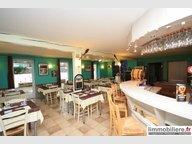 Entrepôt à vendre à Ban-sur-Meurthe-Clefcy - Réf. 6642376