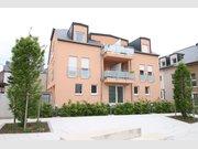 Apartment for rent 1 bedroom in Filsdorf - Ref. 6339784