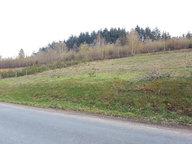Terrain constructible à vendre à Saulcy-sur-Meurthe - Réf. 7193064