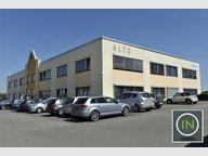 Bureau à louer à Windhof (Koerich) - Réf. 5694440