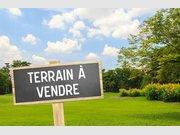 Terrain non constructible à vendre F1 à Saint-Hilaire-de-Riez - Réf. 6637544