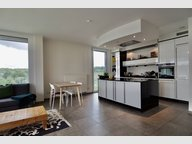 Apartment for rent 2 bedrooms in Luxembourg-Kirchberg - Ref. 7261160