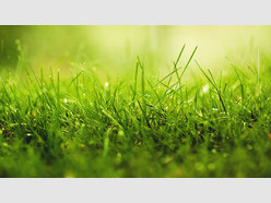 Building land for sale in Berg-sur-Moselle - Ref. 6941928