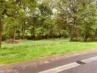 Terrain constructible à vendre à Diebling - Réf. 6368744