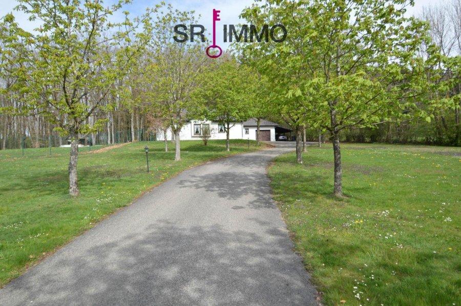 einfamilienhaus kaufen 5 zimmer 136 m² orlenbach foto 2