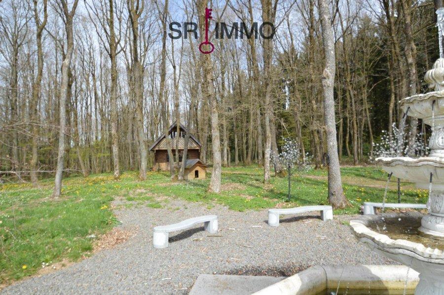 einfamilienhaus kaufen 5 zimmer 136 m² orlenbach foto 6
