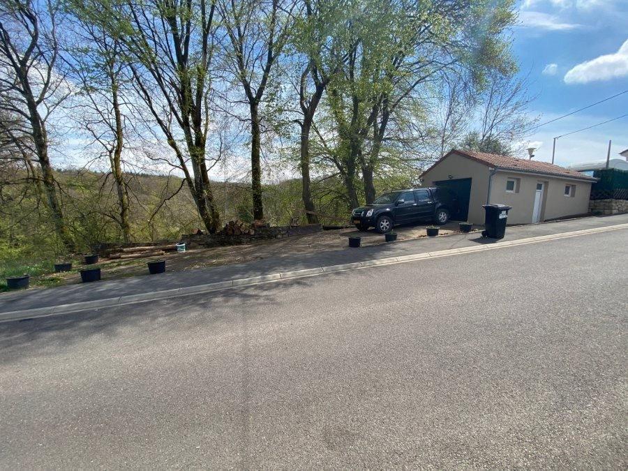 acheter terrain constructible 0 pièce 0 m² villerupt photo 1
