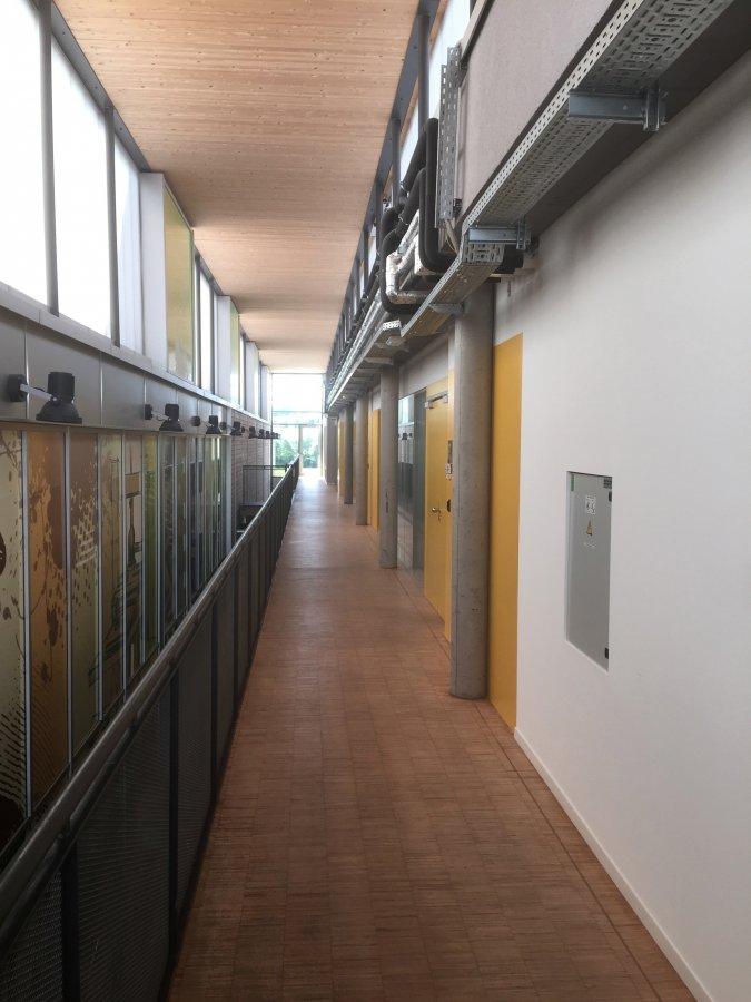 louer bureau 0 chambre 258 m² leudelange photo 3