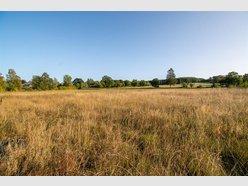 Terrain constructible à vendre à Libin - Réf. 6952201