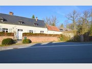 Haus zur Miete 4 Zimmer in Houyet - Ref. 6260233