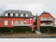 Appartement à louer 2 Chambres à Berchem - Réf. 6301961