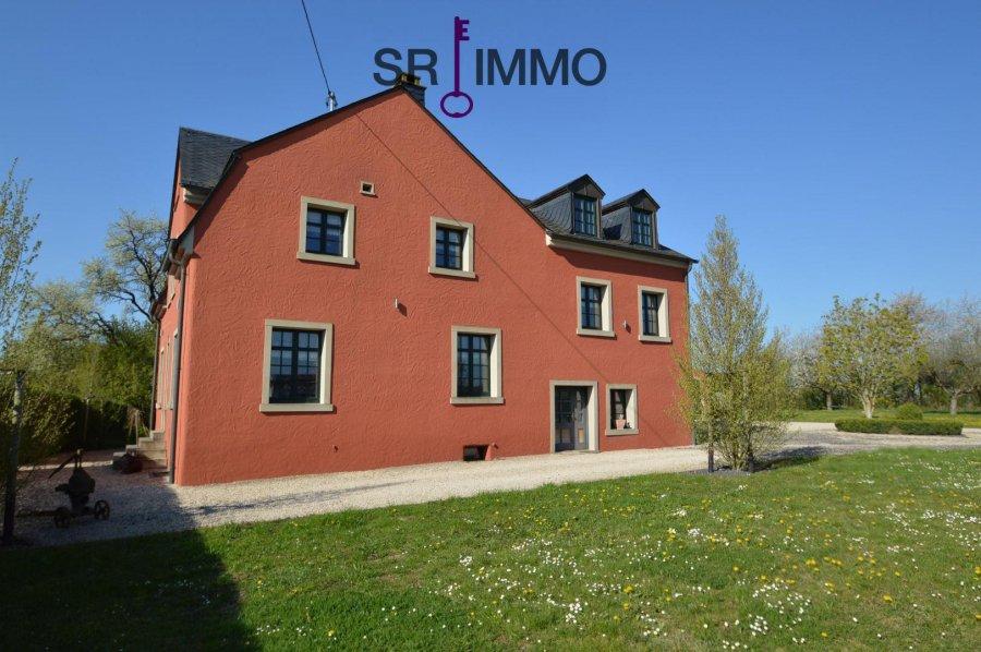 einfamilienhaus kaufen 0 zimmer 184 m² bitburg foto 7