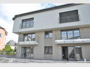 Duplex à louer 1 Chambre à Bertrange - Réf. 6980921