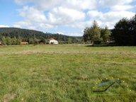 Terrain constructible à vendre à Gérardmer - Réf. 7077433