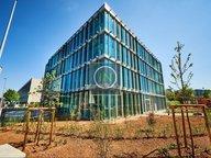 Bureau à louer à Luxembourg-Gasperich - Réf. 6895177
