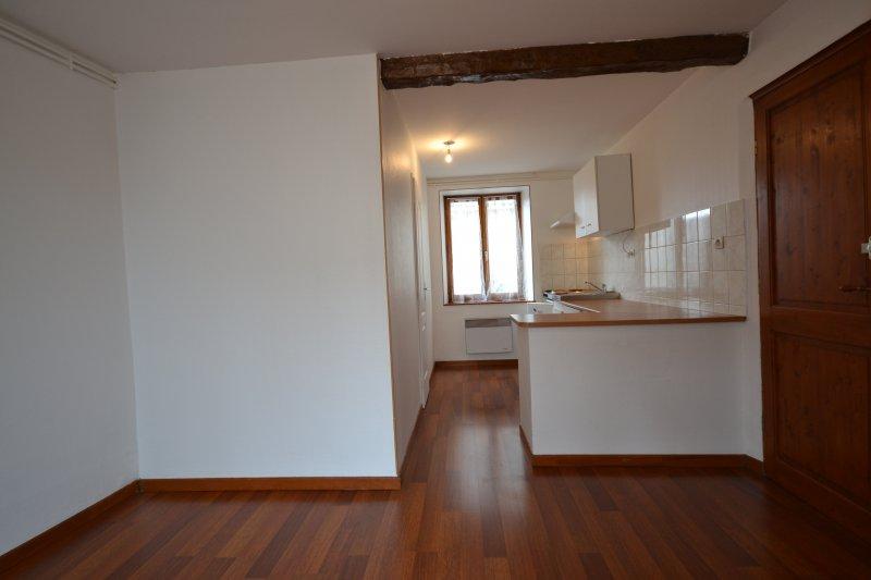 louer appartement 1 pièce 21 m² nancy photo 2