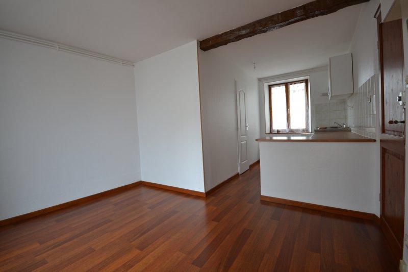 louer appartement 1 pièce 21 m² nancy photo 4