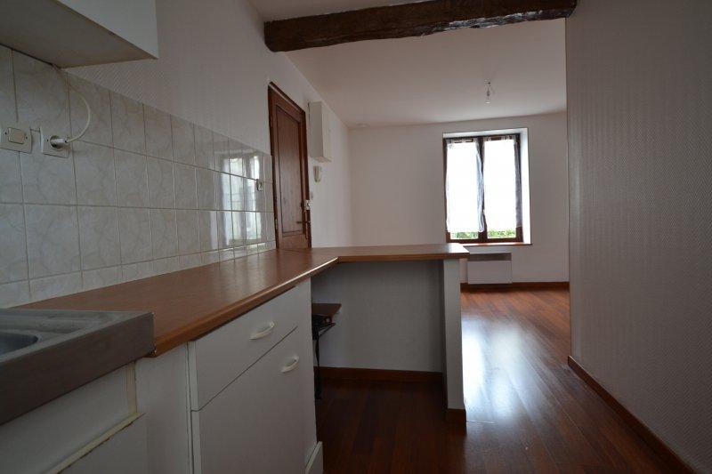 louer appartement 1 pièce 21 m² nancy photo 6
