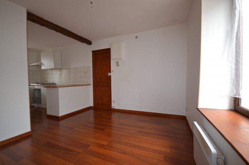 louer appartement 1 pièce 21 m² nancy photo 1