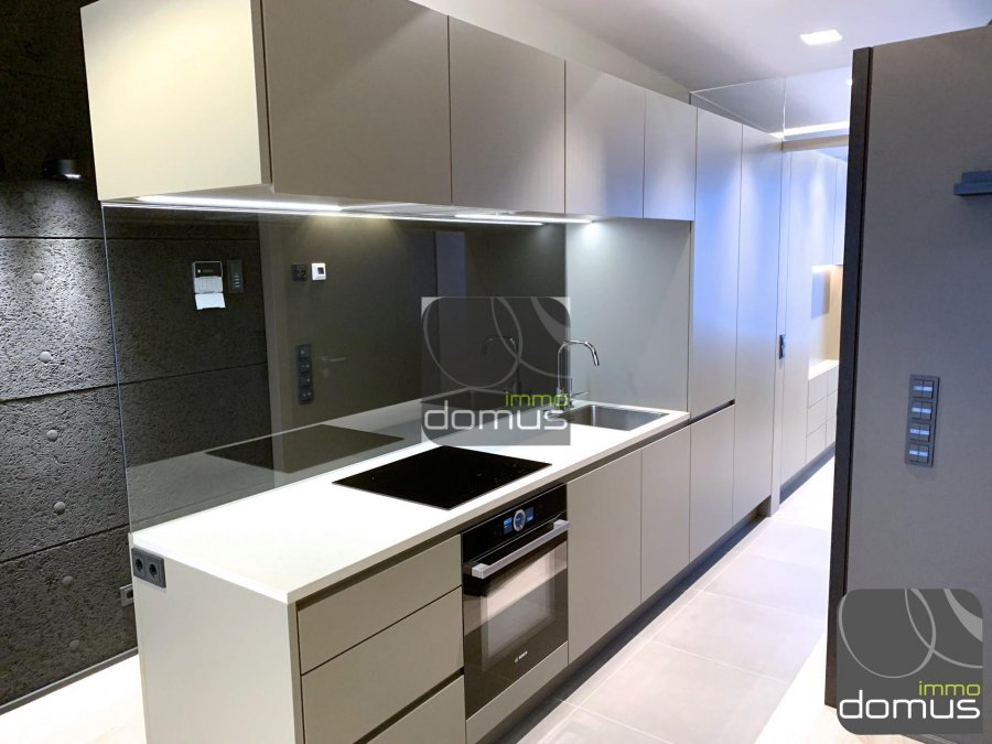 louer appartement 0 chambre 45 m² mondercange photo 2