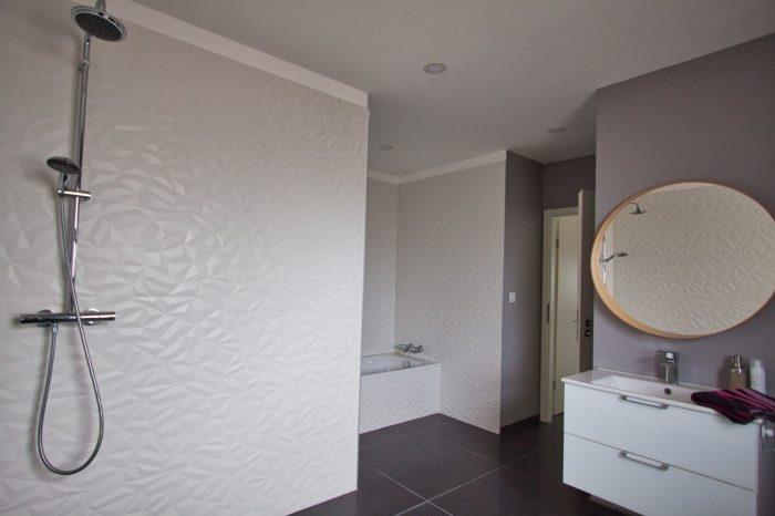 acheter maison individuelle 0 pièce 243 m² rodemack photo 7
