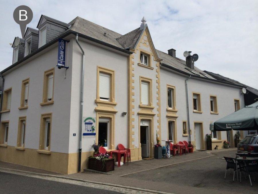 Immeuble de rapport à vendre 8 chambres à Eschdorf