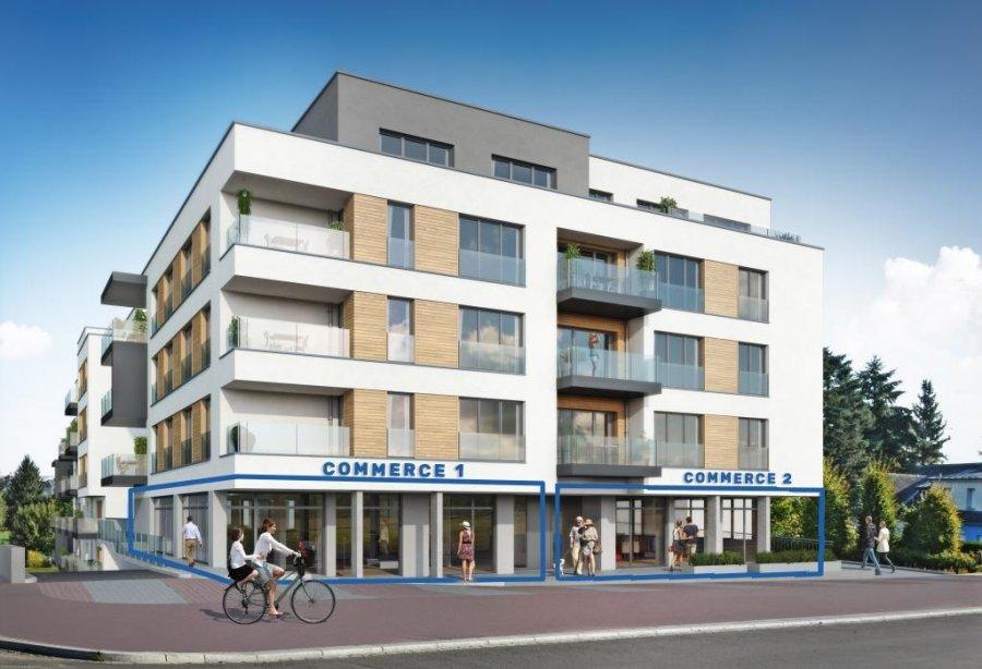 retail for buy 0 bedroom 189.29 m² bertrange photo 1