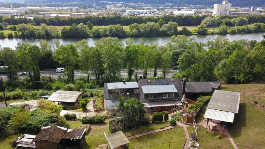 einfamilienhaus kaufen 8 zimmer 230 m² trier foto 5
