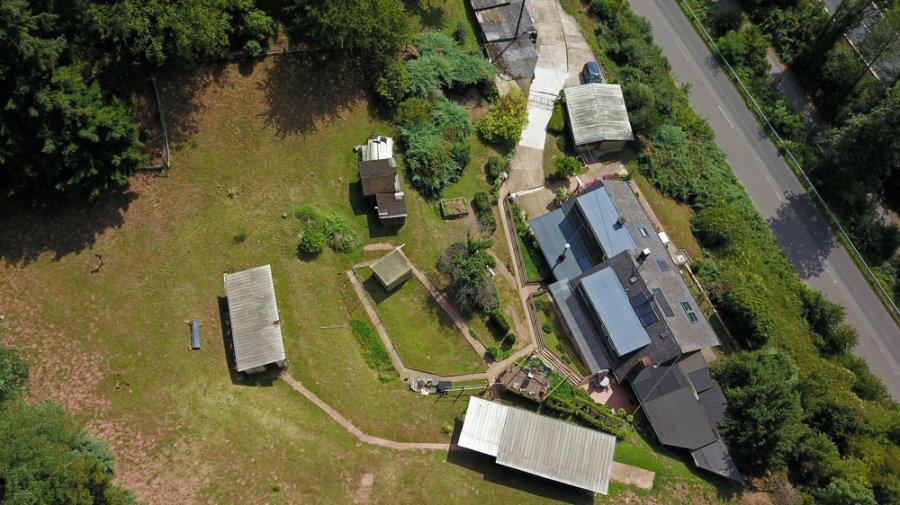 einfamilienhaus kaufen 8 zimmer 230 m² trier foto 6