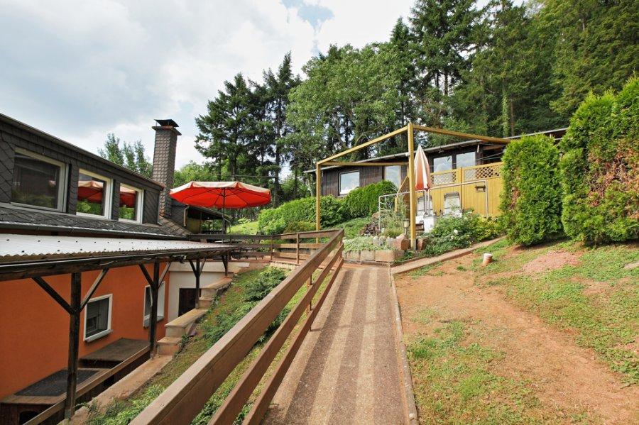 einfamilienhaus kaufen 8 zimmer 230 m² trier foto 4