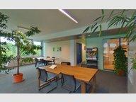 Bureau à louer à Windhof (Koerich) - Réf. 6624617