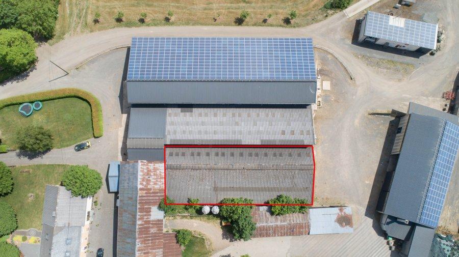 lagerfläche mieten 0 zimmer 800 m² leidenborn foto 3
