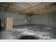 Entrepôt à louer à Bertrange - Réf. 6399849