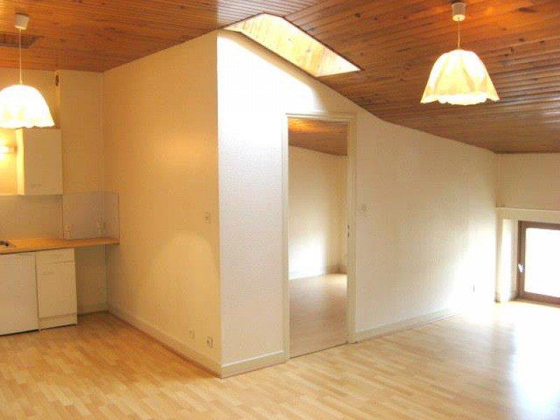 louer appartement 2 pièces 47.3 m² nancy photo 3
