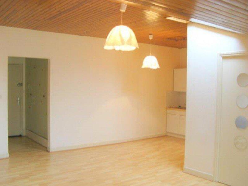 louer appartement 2 pièces 47.3 m² nancy photo 2