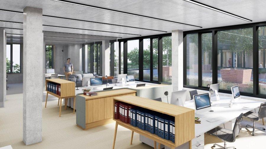 louer bureau 0 chambre 595 m² leudelange photo 3