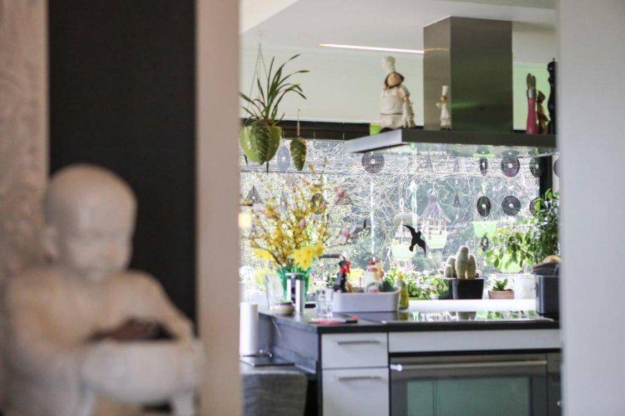 acheter maison individuelle 4 chambres 400 m² waldbredimus photo 7