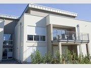 Wohnung zur Miete 2 Zimmer in Irrel - Ref. 5090185