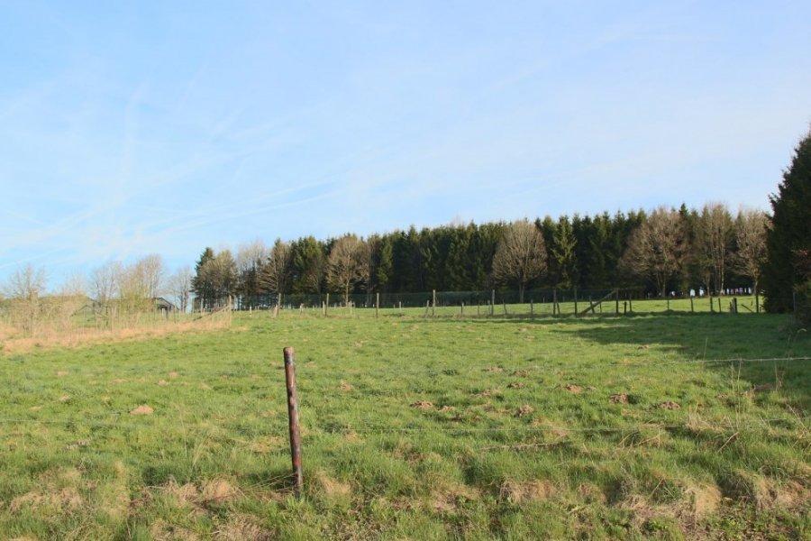 acheter terrain constructible 0 pièce 1161 m² gouvy photo 2
