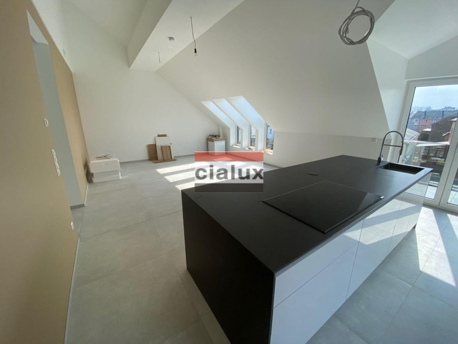 acheter appartement 3 chambres 104.55 m² clemency photo 3