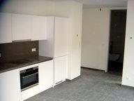 Appartement à louer 1 Chambre à Esch-sur-Alzette - Réf. 6314393