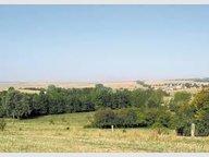 Terrain constructible à vendre à Jarny - Réf. 6257817
