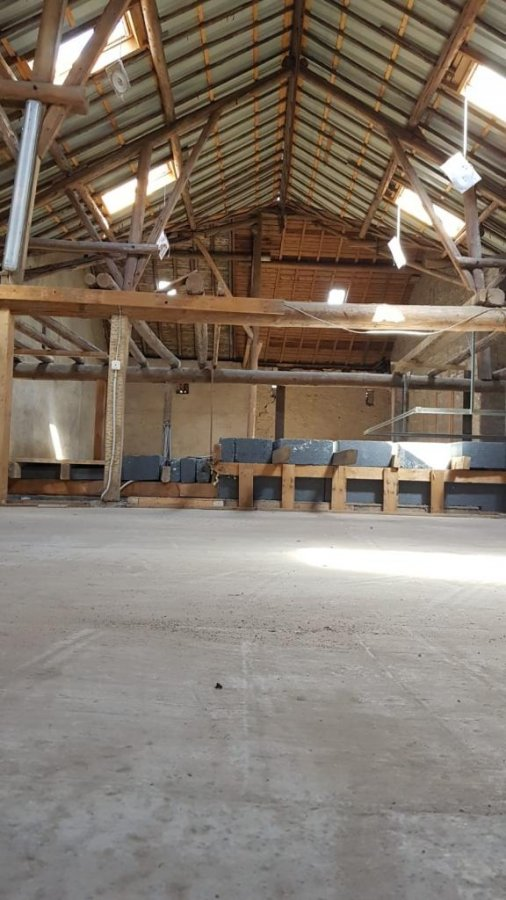 louer entrepôt 0 chambre 200 m² leudelange photo 1