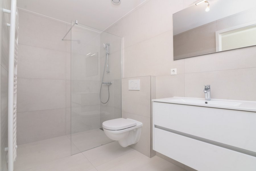 acheter appartement 3 chambres 128.12 m² alzingen photo 5