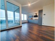 Wohnung zur Miete 1 Zimmer in Belval - Ref. 6989737