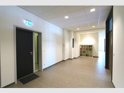 Office for rent in Steinsel - Ref. 6151593